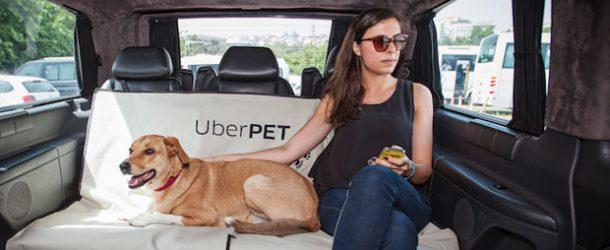 Avrupa Adalet Divanı'dan Uber'e ruhsat şartı