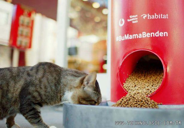 sokak hayvanları Vodafone